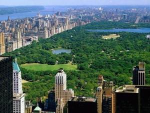Central Park Overzicht